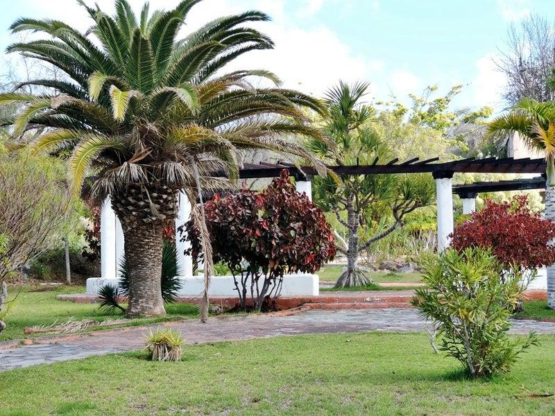 Картинки по запросу botanical garden