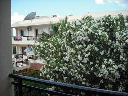 Summer Memories Hotel Apartments Image 36
