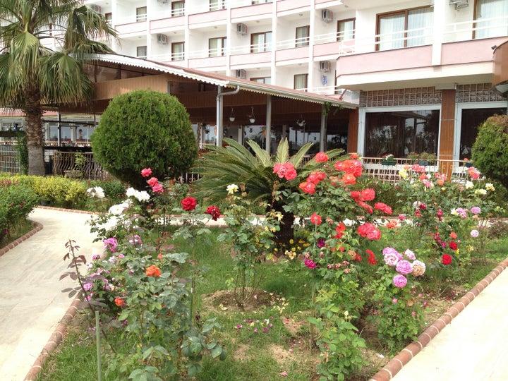 Royal Ideal Beach Hotel Image 4