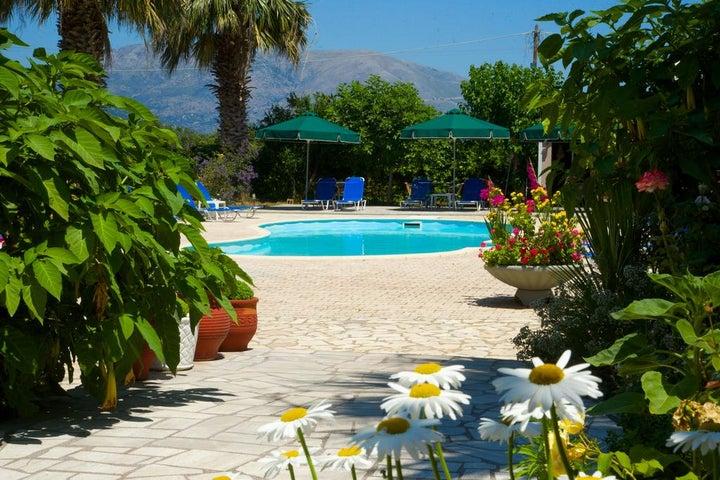 Nikos Studios & Apartments, Kefalonia Image 14