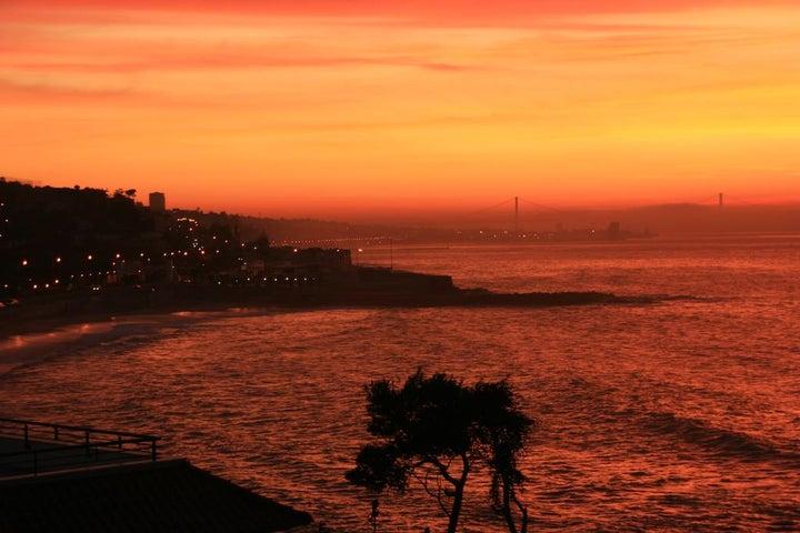 Solar Palmeiras Image 8