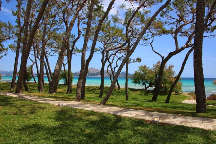 IBEROSTAR Playa de Muro Hotel Image 12