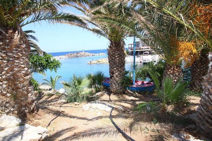 Palm Bay Image 2