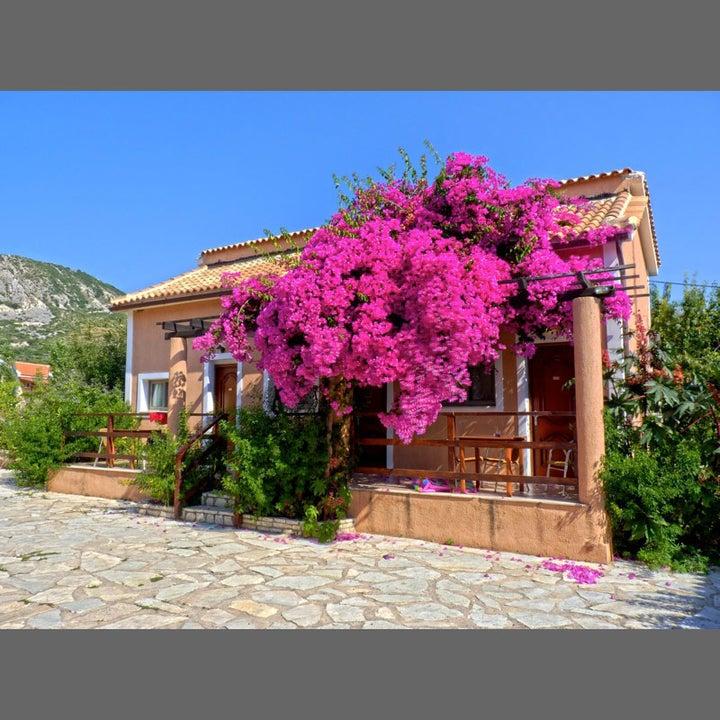 Efrosini Village in Katelios, Kefalonia, Greek Islands