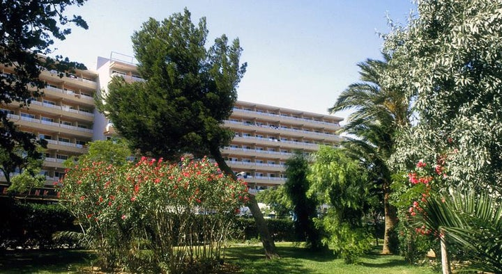 Barracuda Hotel Image 10