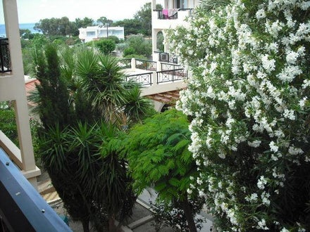 Summer Memories Hotel Apartments Image 35