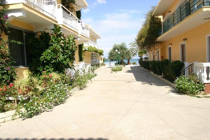 Lemon Grove in Kavos, Corfu, Greek Islands