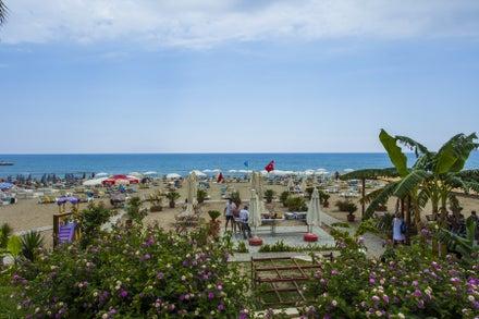 Avena Resort And Spa Hotel