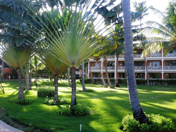 Vik Hotel Arena Blanca Image 22
