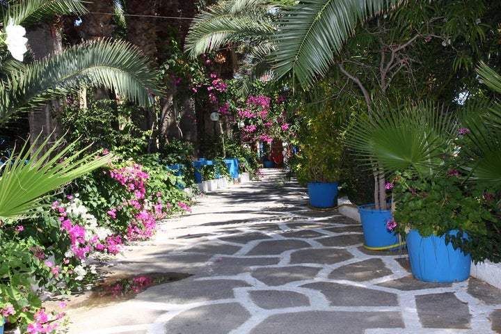 Palm Bay Image 31