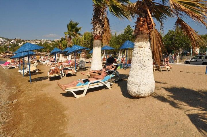 Siesta Beach Apartments Image 6