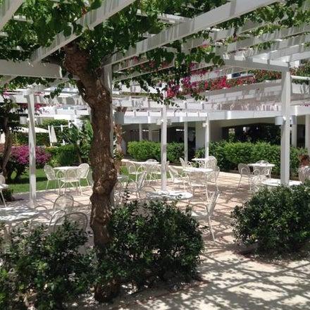 Nissi Park Image 9