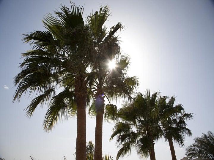 Coral Beach Rotana Resort - Hurghada Image 7
