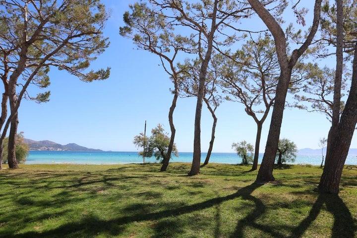 IBEROSTAR Playa de Muro Hotel Image 1
