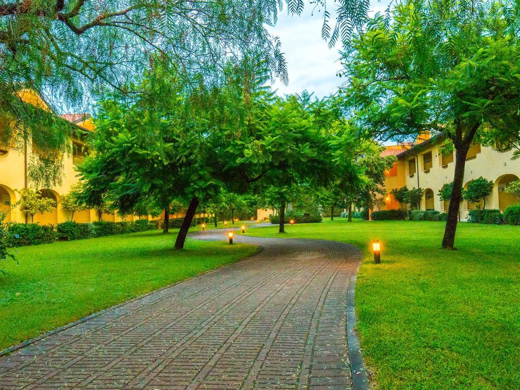 Beautiful Acacia Tree Garden Hotel Images - Beautiful Garden - dlix.us